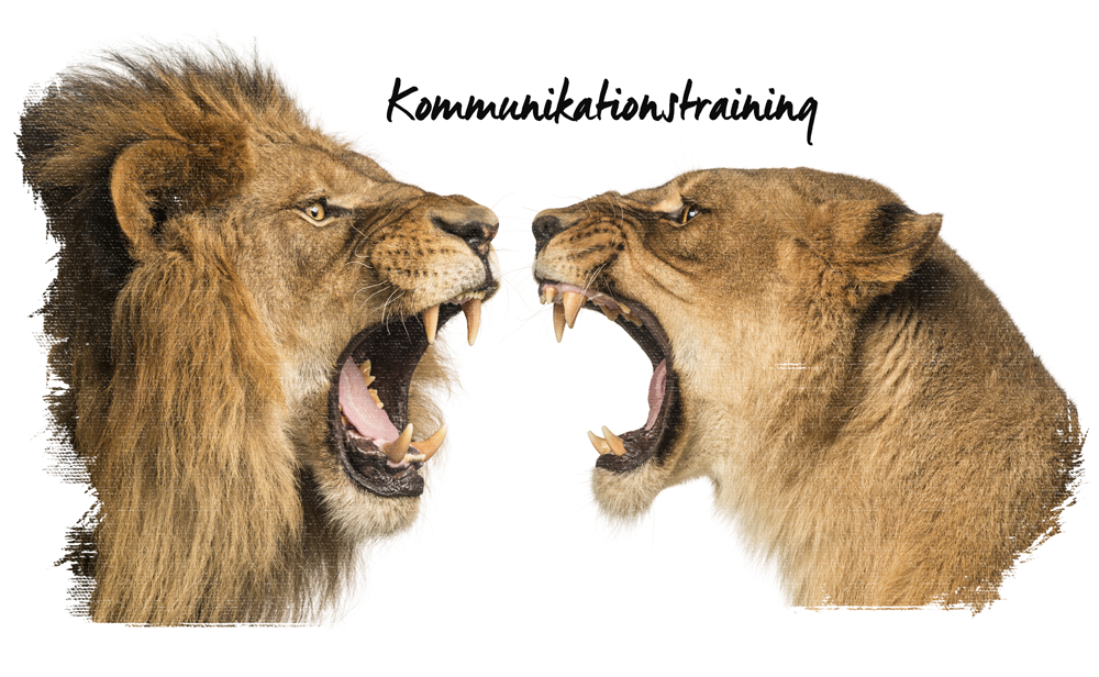 Kommuniktraining_small
